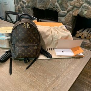 Louis Vuitton Palm Springs Backpack PM waitlisted